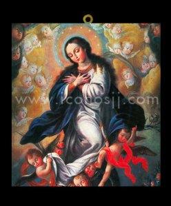 VRM20 Virgen de la Inmaculada Concepción