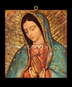 VRM49 - Virgen de la Guadalupe