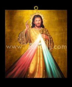 CRISTOS9 - El Señor de la Divina Misericordia