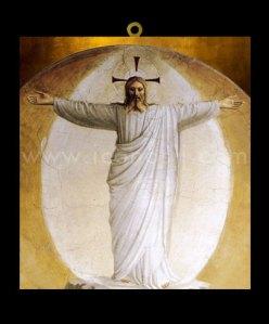 VJESUS1 - La Transfiguración